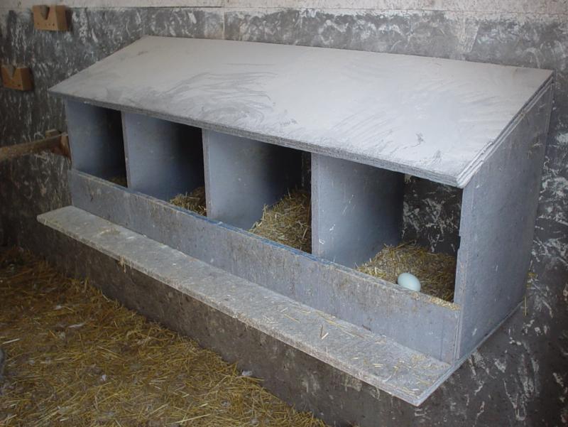 Poultry Housing Help - PoultryHelp.com - Your Best Online Source